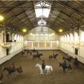 De Hollandsche Manege paarden museum